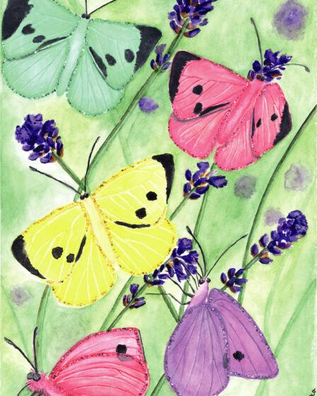 Coloured butterflies