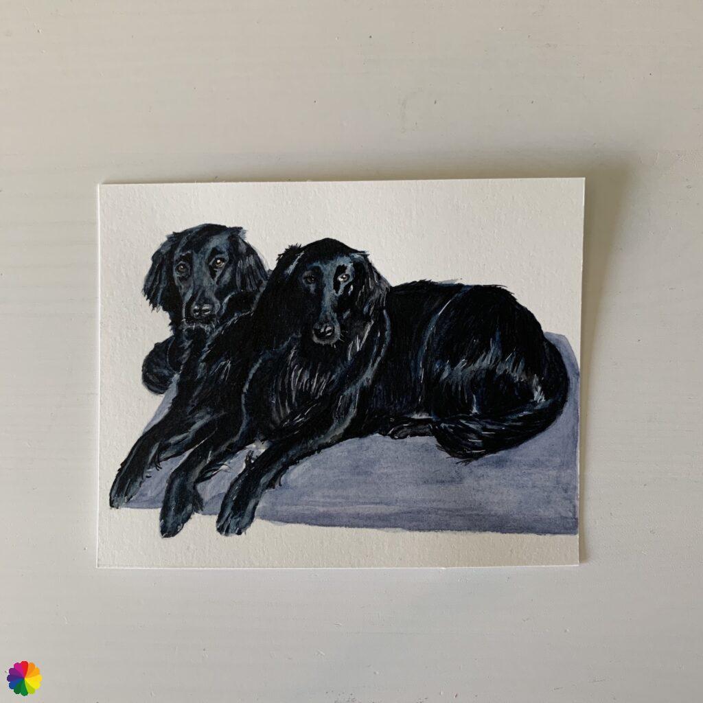 Test version dog portrait flat coated retrievers