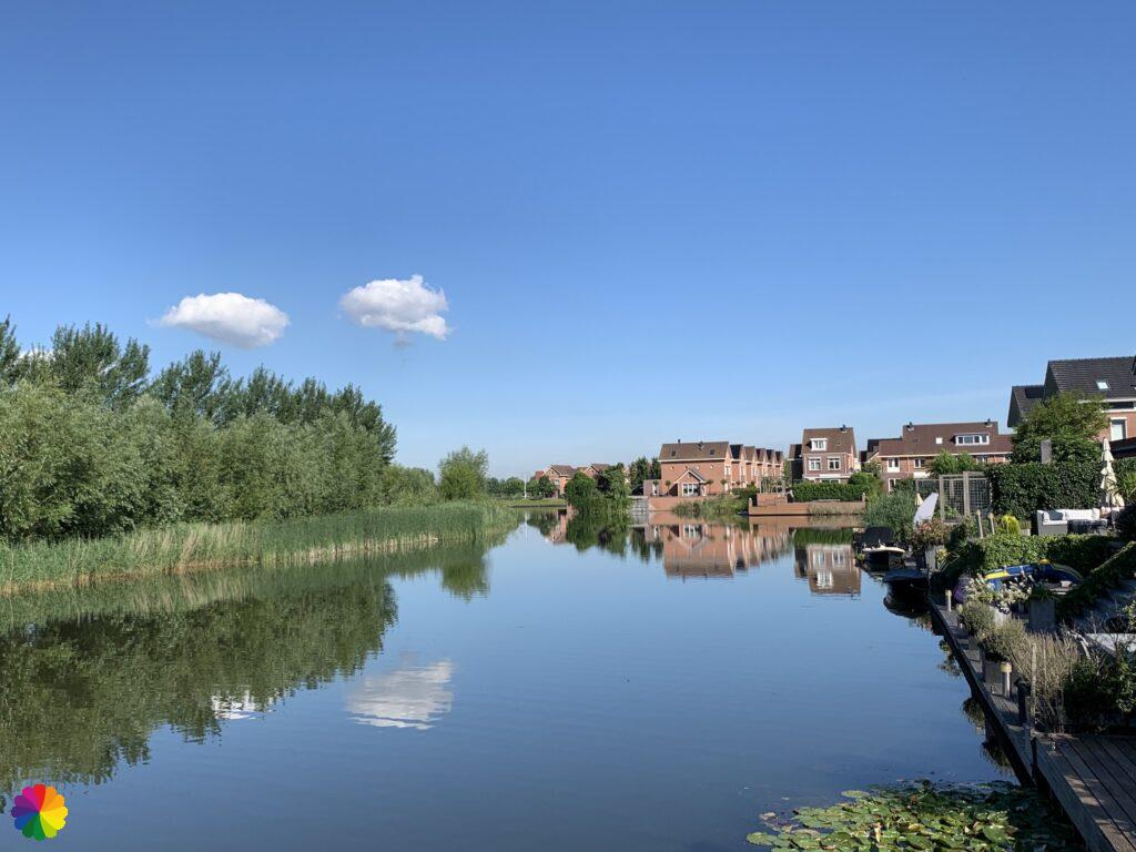 Pond at residential area in Rhoon