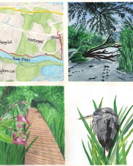 Hiking map Rhoon - Hoogvliet
