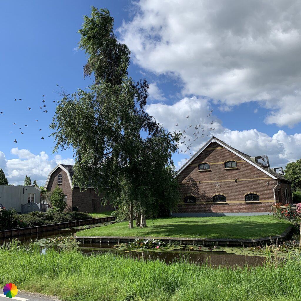 Farm at Oud Reeuwijk, the Netherlands
