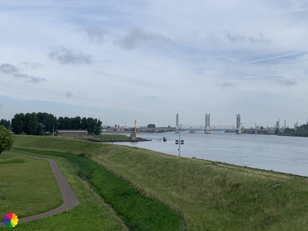Dike with view at the Botlek bridge
