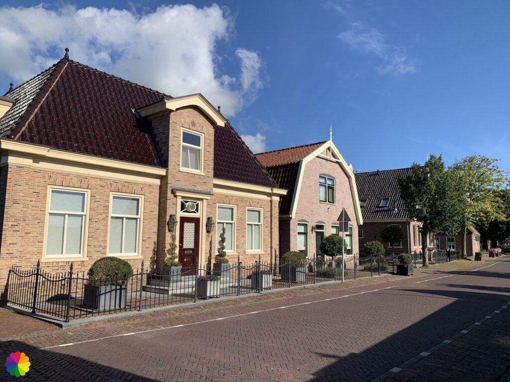 Graft in the Netherlands