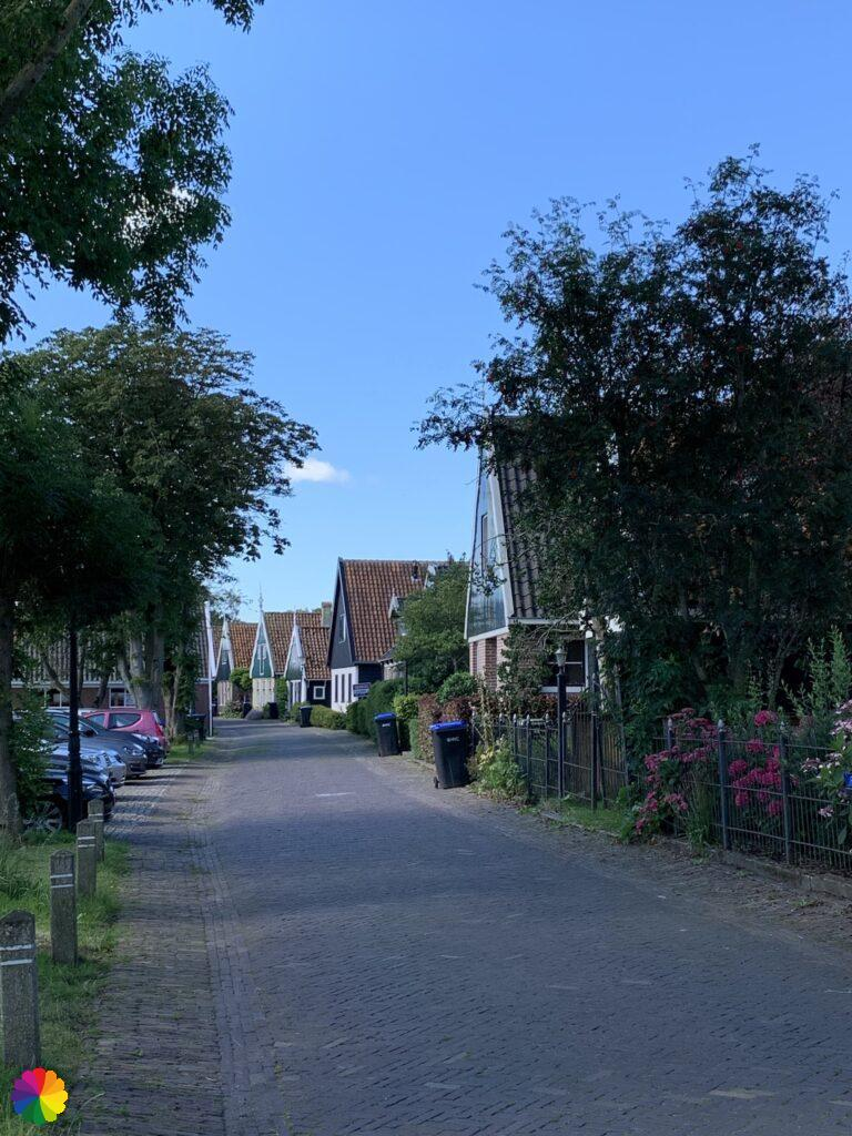 Houses with wooden facades in Driehuizen