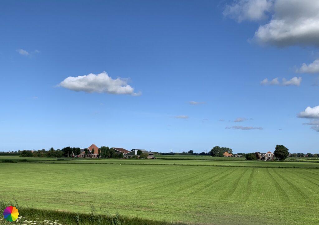 Stolp farm at the Meerdijkpolder