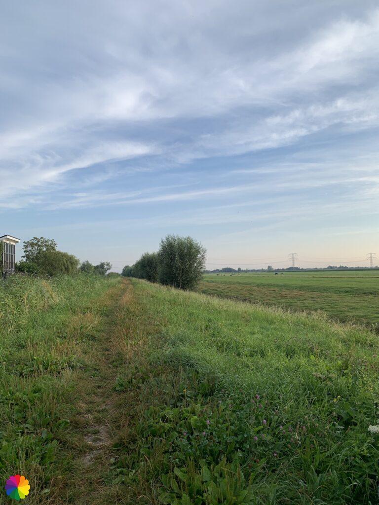 Grassy path along Lange Weidsche Boezem