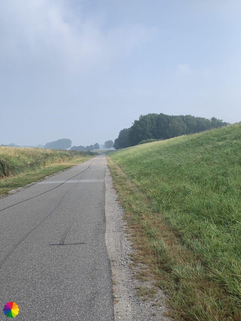 The road to Zwartewaal in the Netherlands