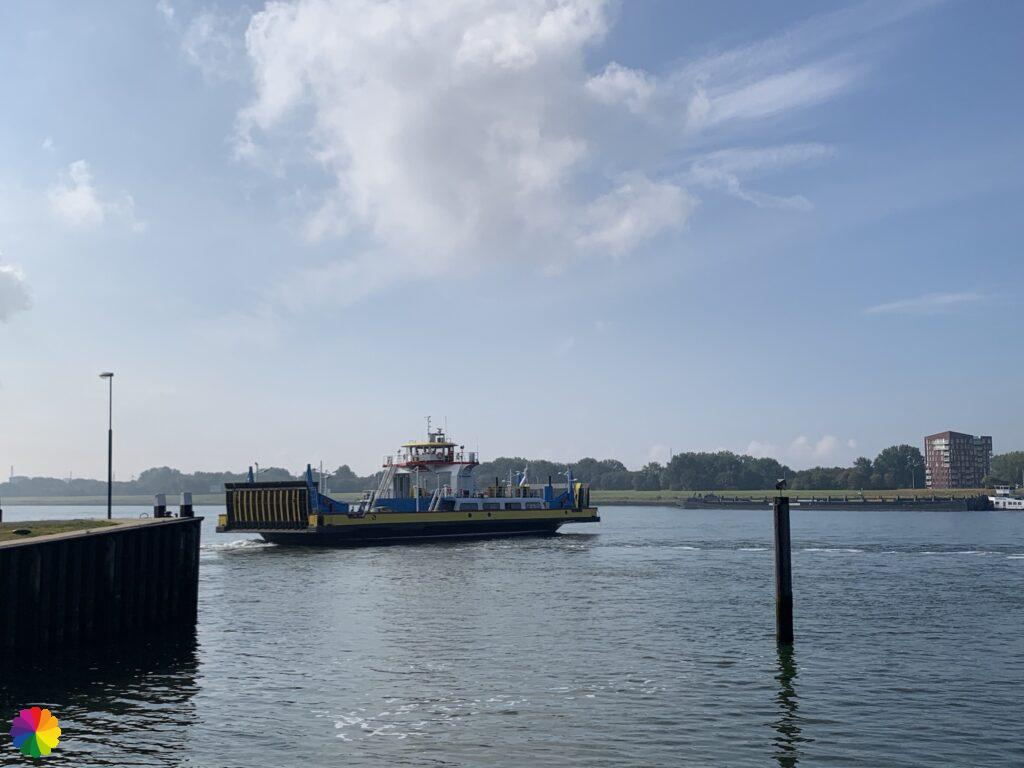 The ferry goes back to Rozenburg