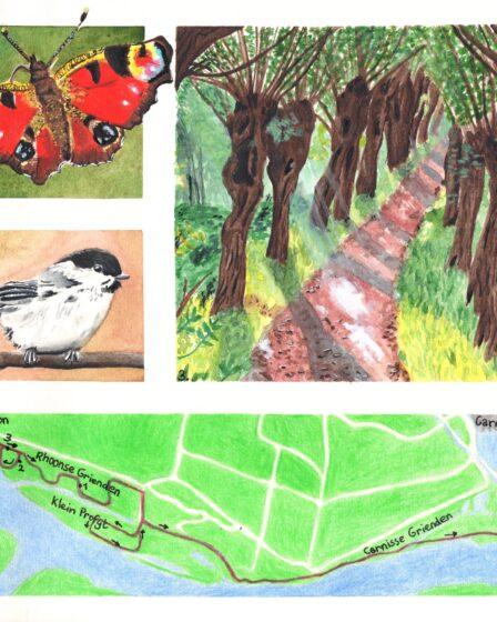 Hiking map Rhoonse en Carnisse Grienden