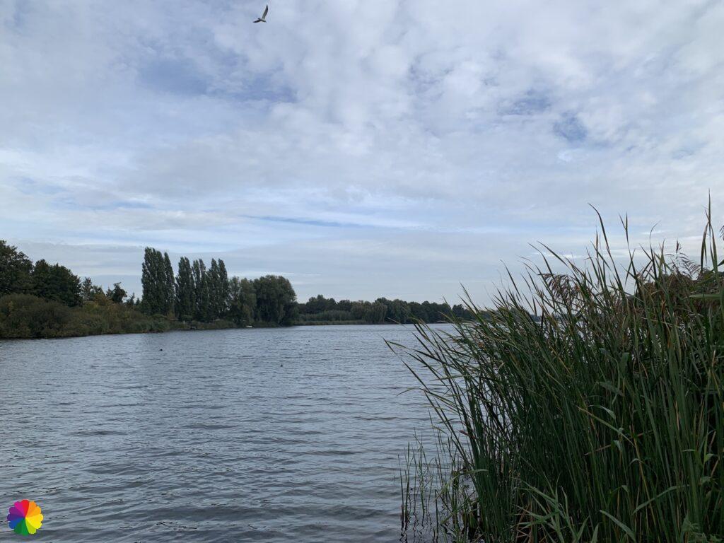 De Waal near Heerjansdam