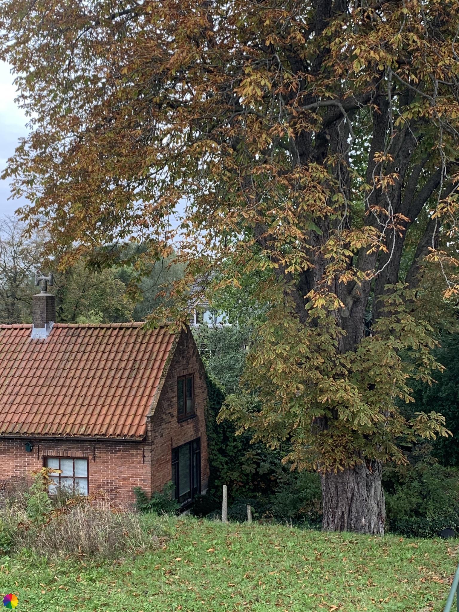 Dijkhuisje bij de Kooiweg