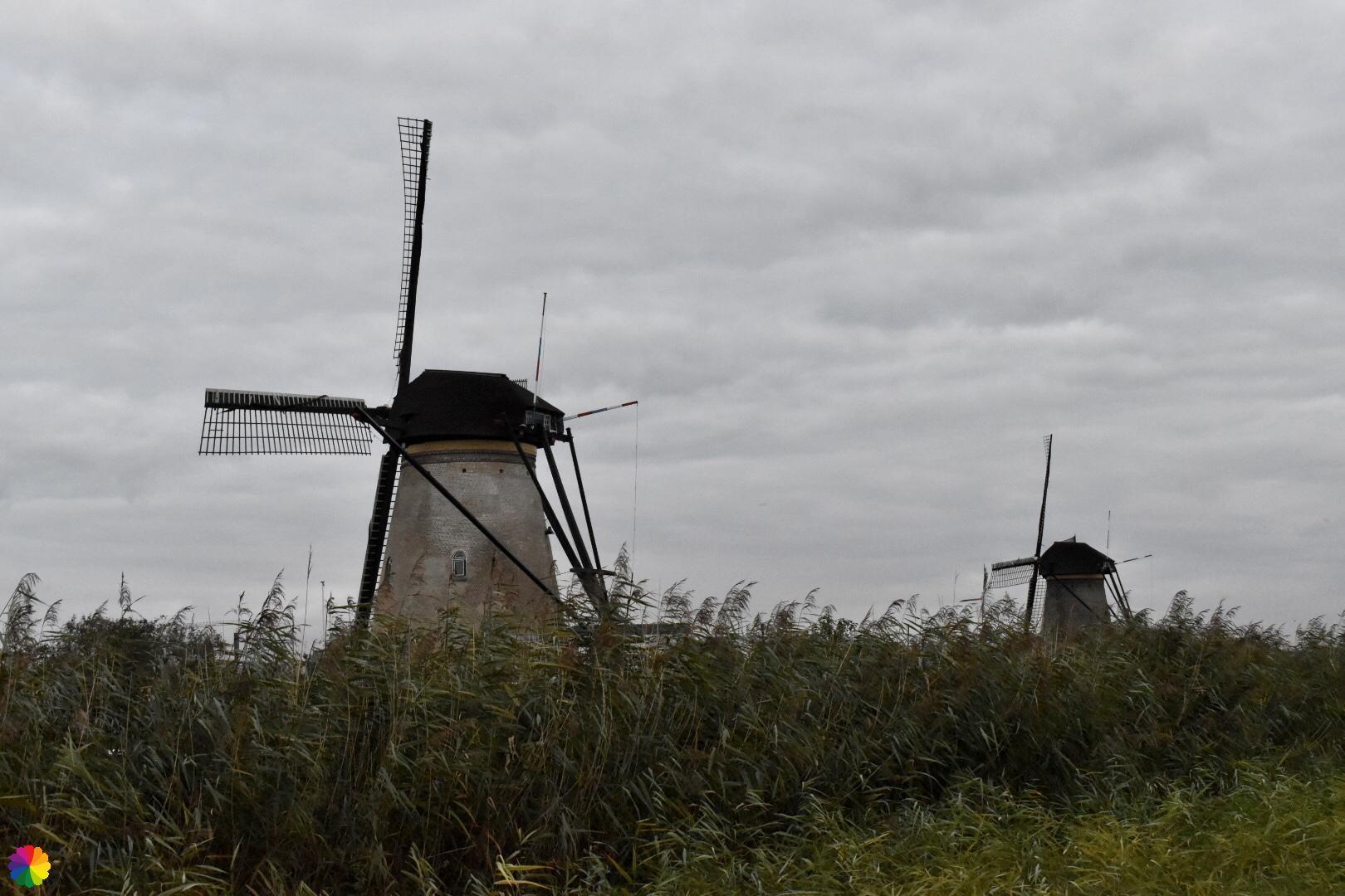 Kinderdijk molen 3