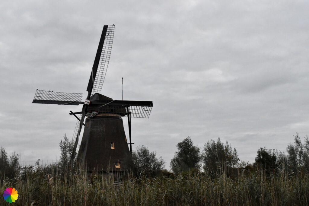 Windmill at Kinderdijk 4