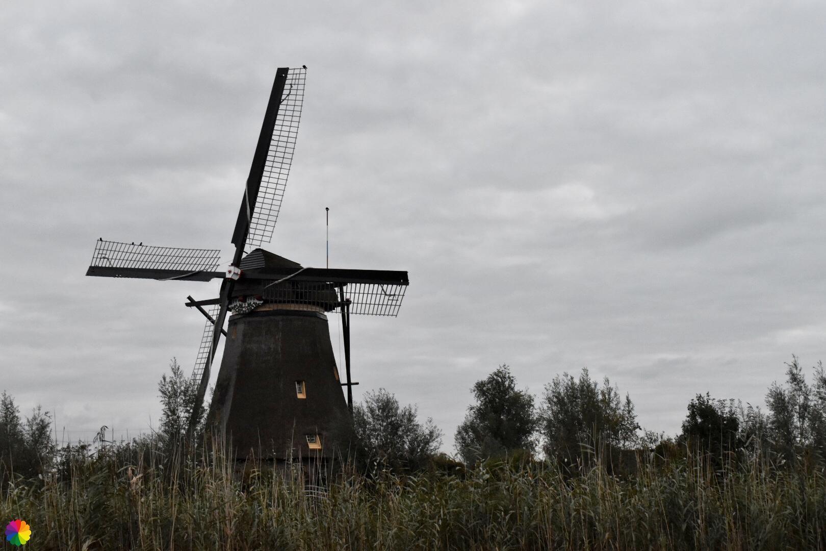 Kinderdijk molen 4