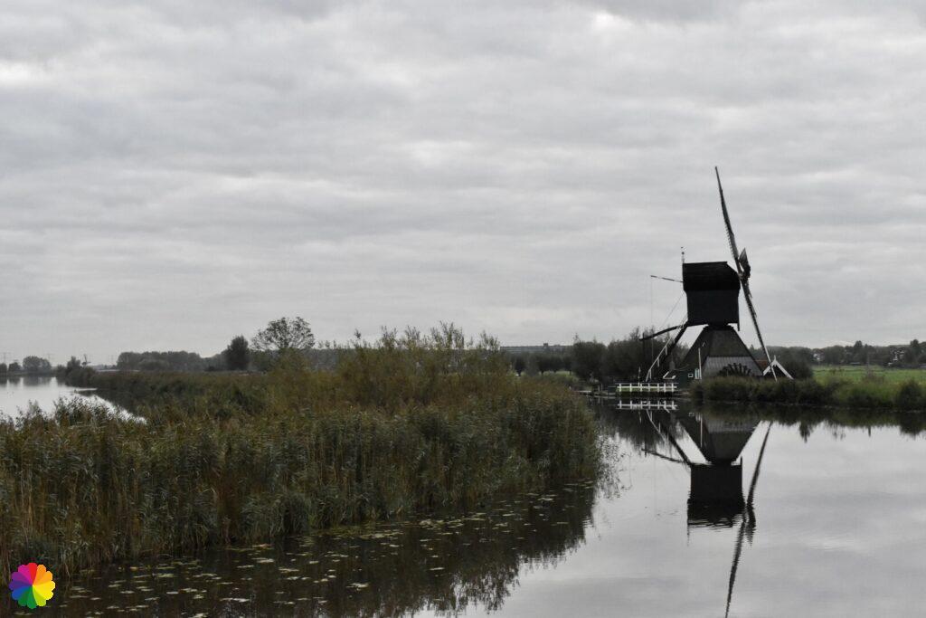 Windmill at Kinderdijk 6