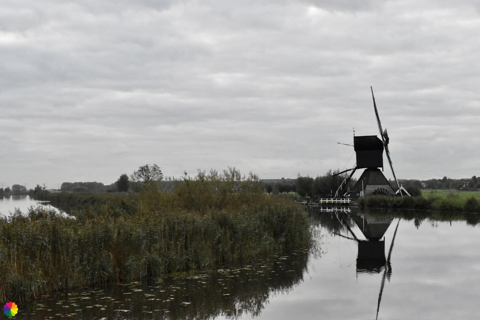 Kinderdijk molen 6