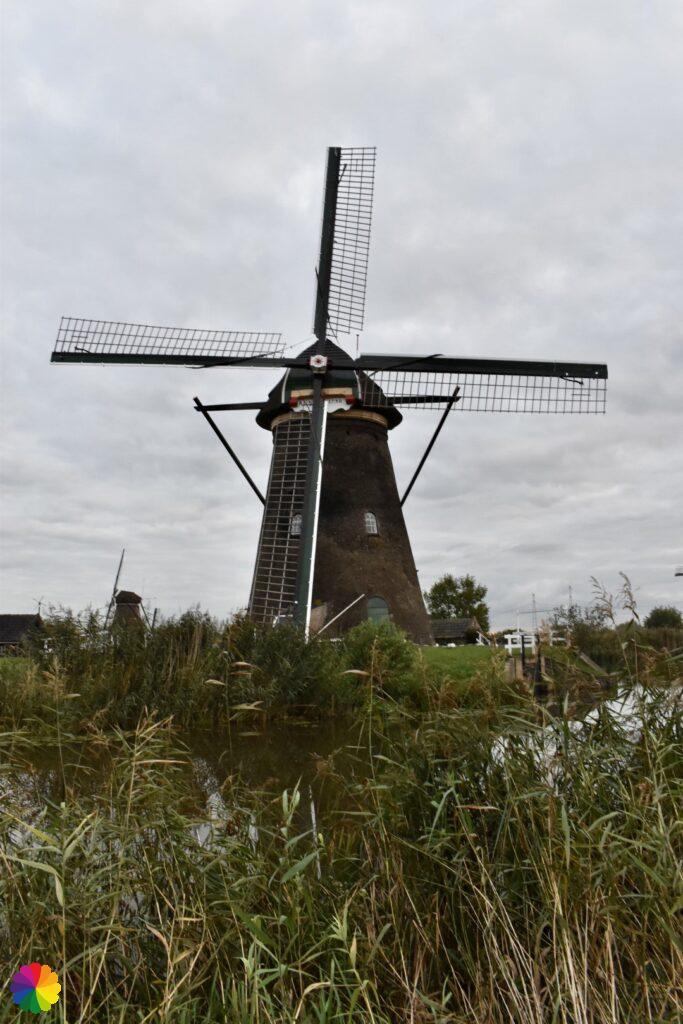 Windmill at Kinderdijk 8