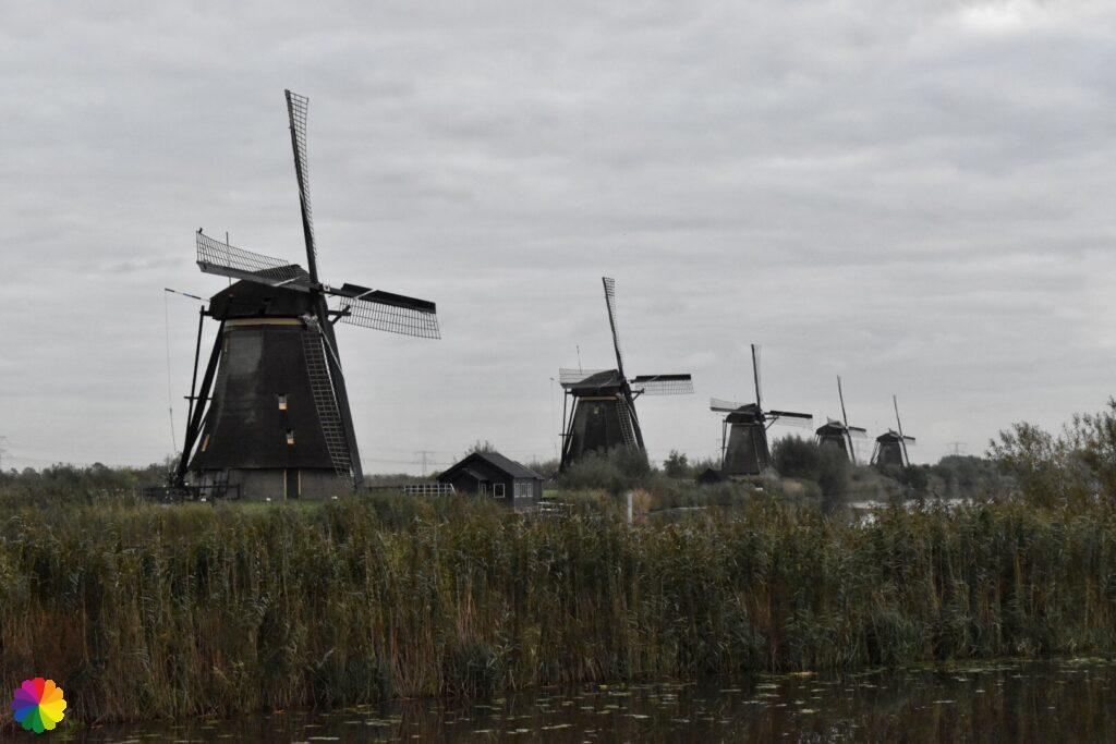 The Overwaard windmills at Kinderdijk