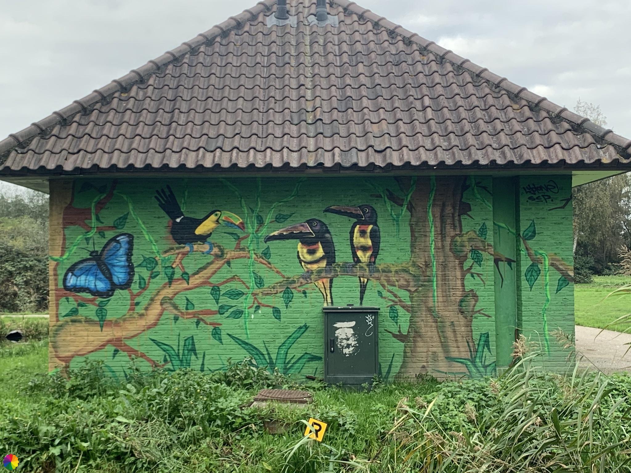 Muurschildering tropische vogels en hele grote vlinder