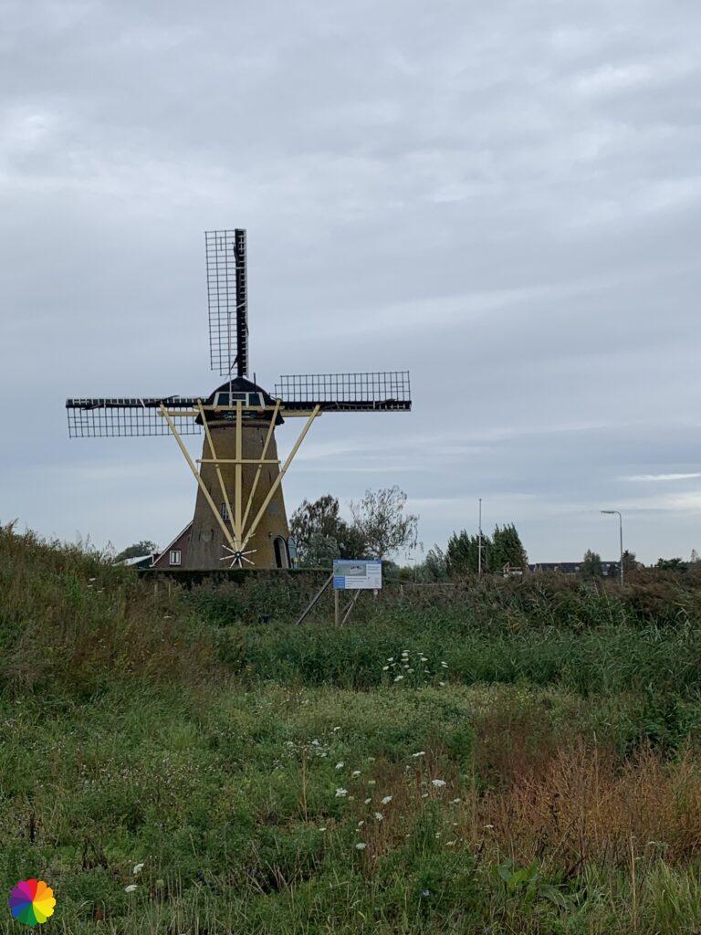 Rijsoordse windmill at Rijsoord