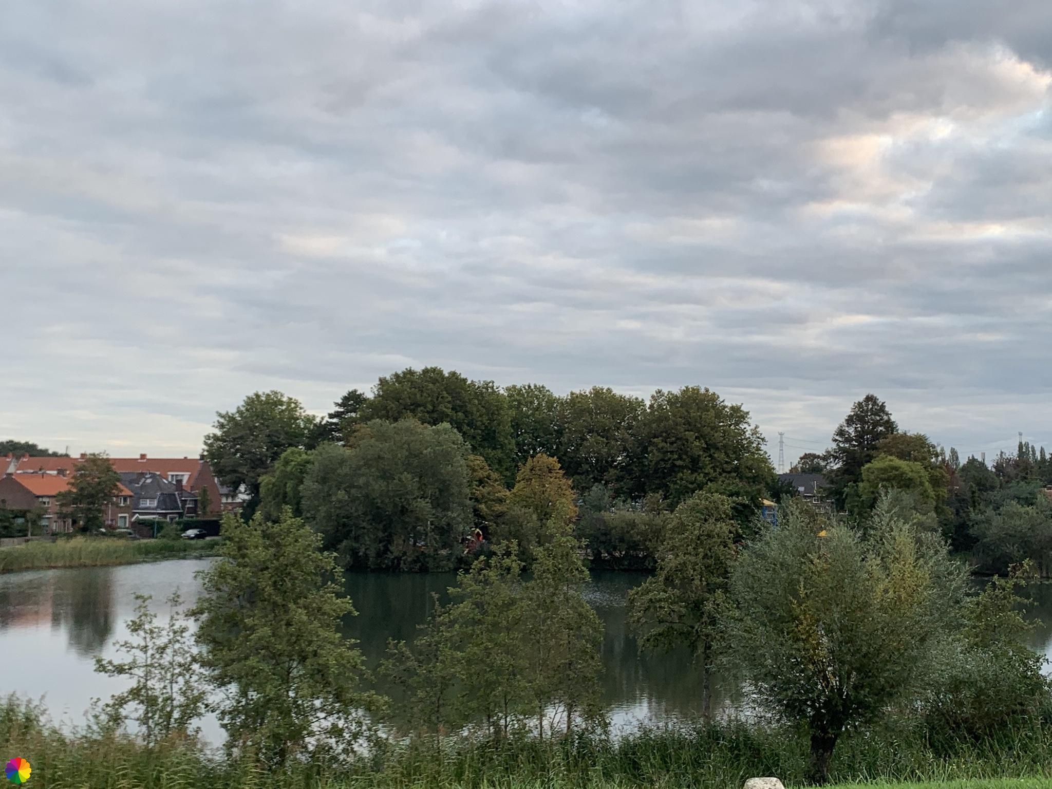 Rijzenwiel in Alblasserdam