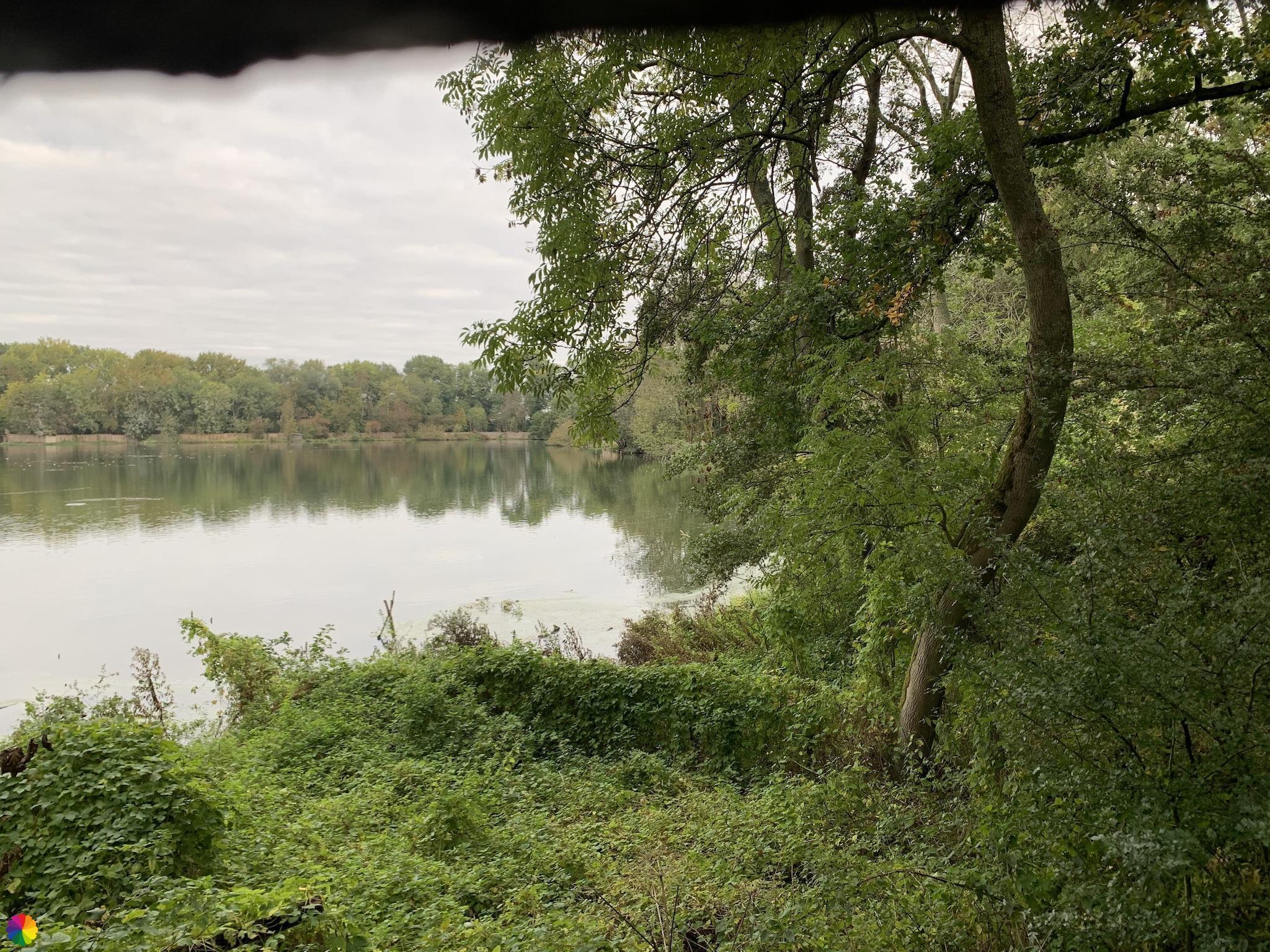 Uitzicht kijkscherm eendenkooi Bakkerswaal