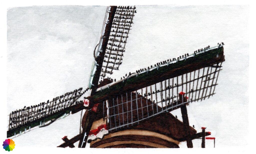 Illustration Kinderdijk windmill with a flock of starlings on the sails
