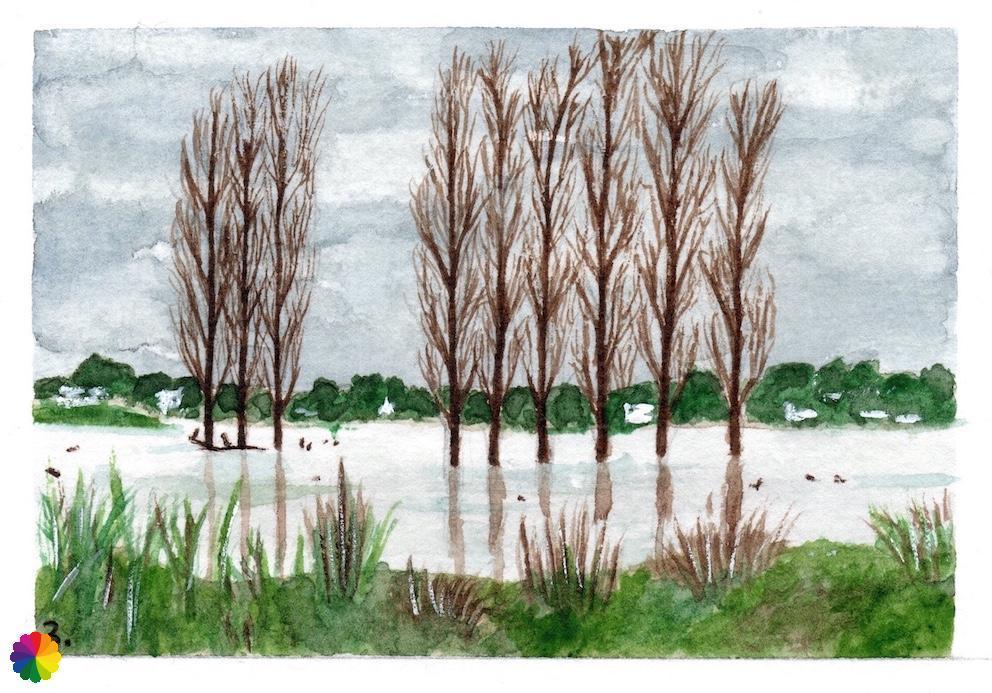 Illustratie rij bomen in het water