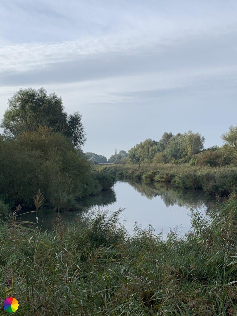 Recreational area Vredepolder near Barendrecht