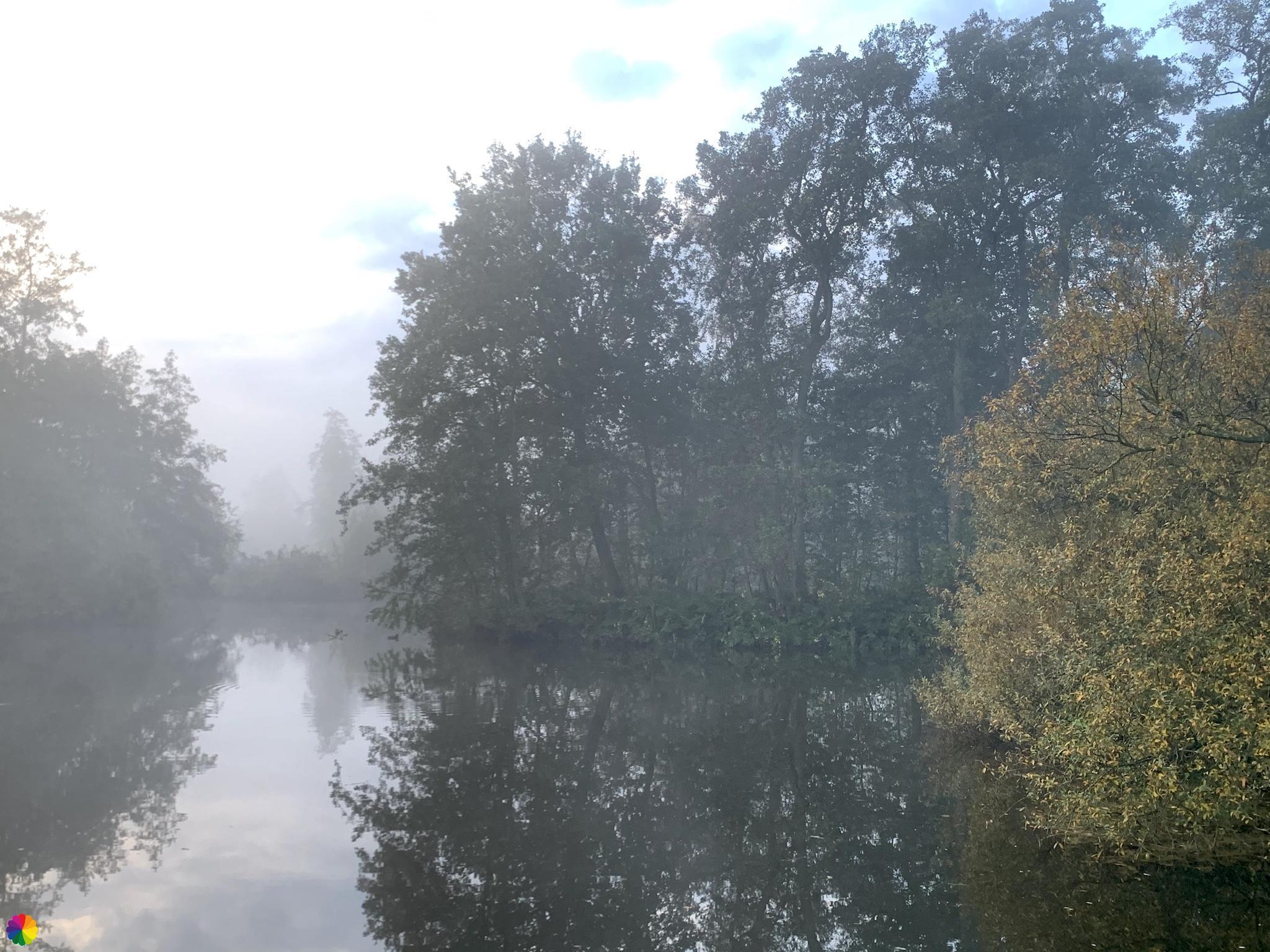 De Loet in de mist