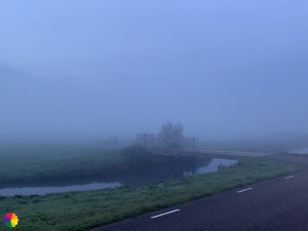 Krimpenerwaard in the mist