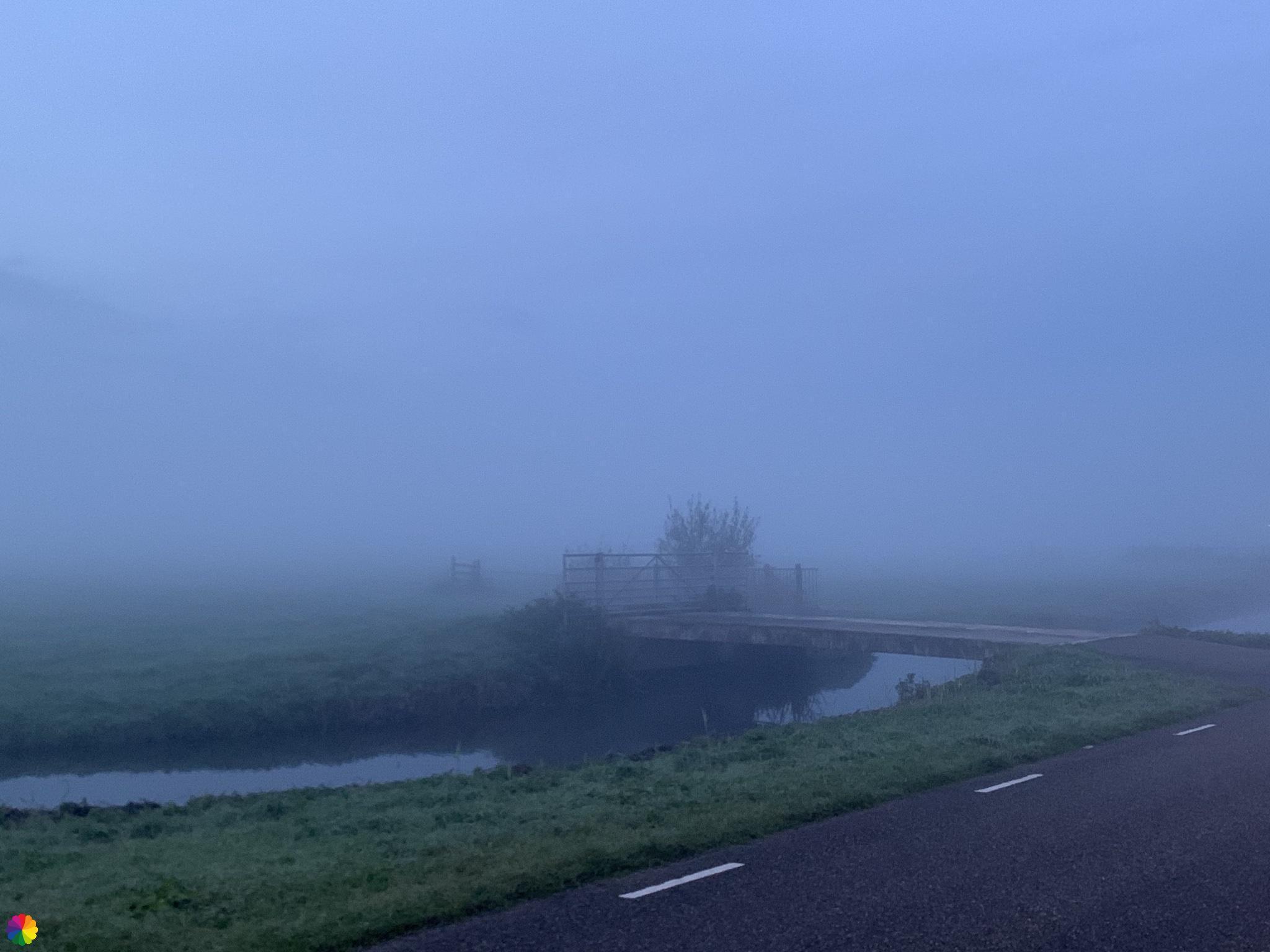 Krimpenerwaard in de mist