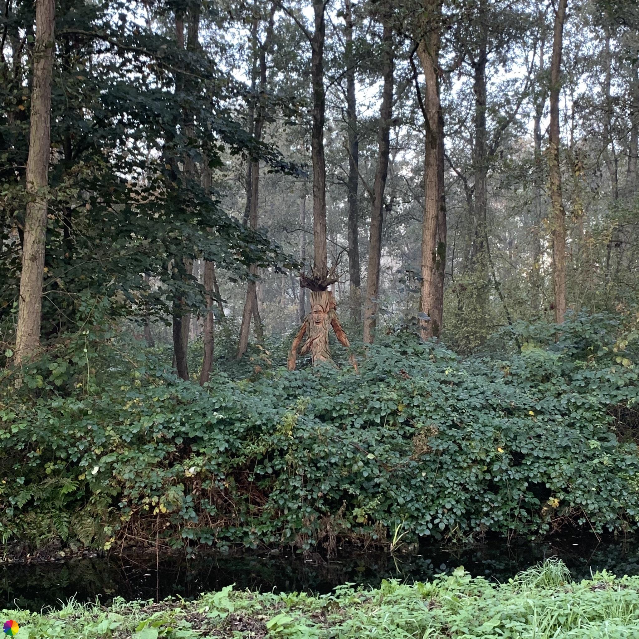 Een ent in het Loetbos