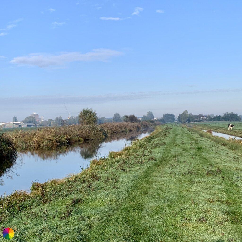 A grassy path in the Krimpenerwaard