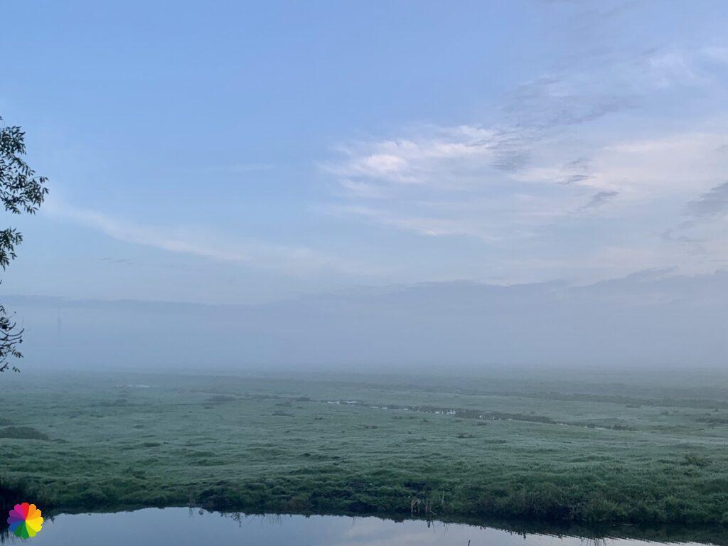 Misty fields of the Berkenwoudse Boezem