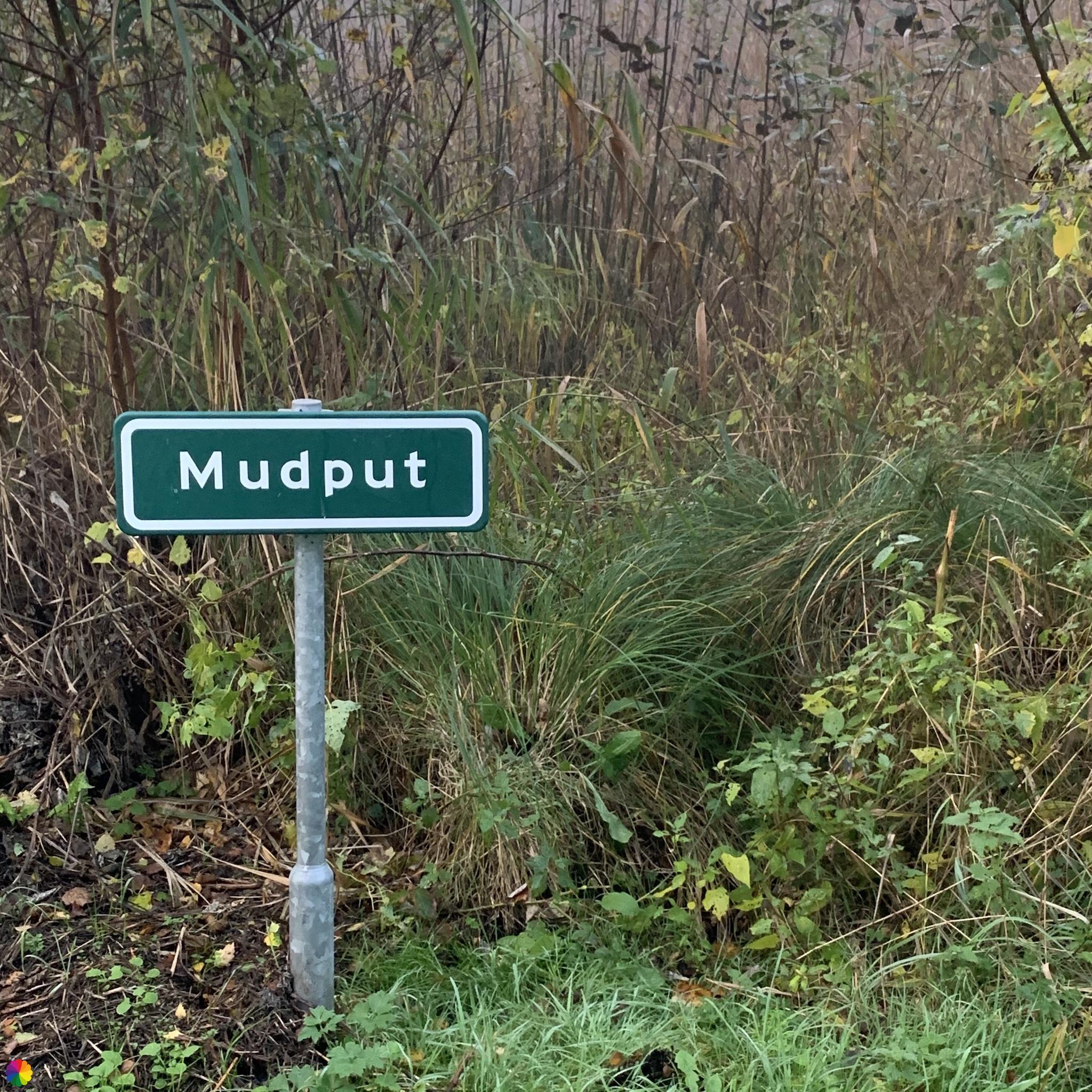 Mudput in het Loetbos