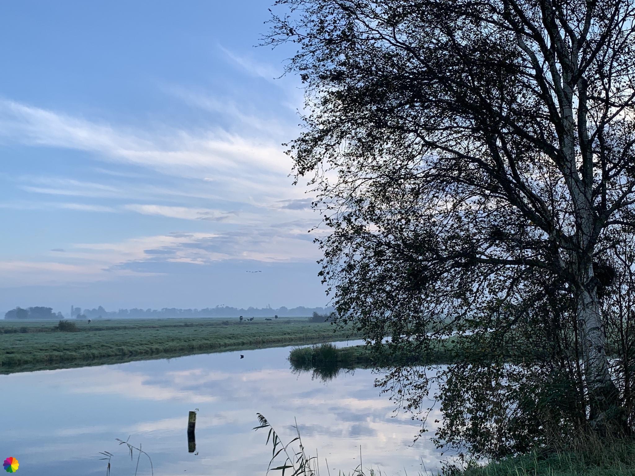 De Berkenwoudse Boezem polder