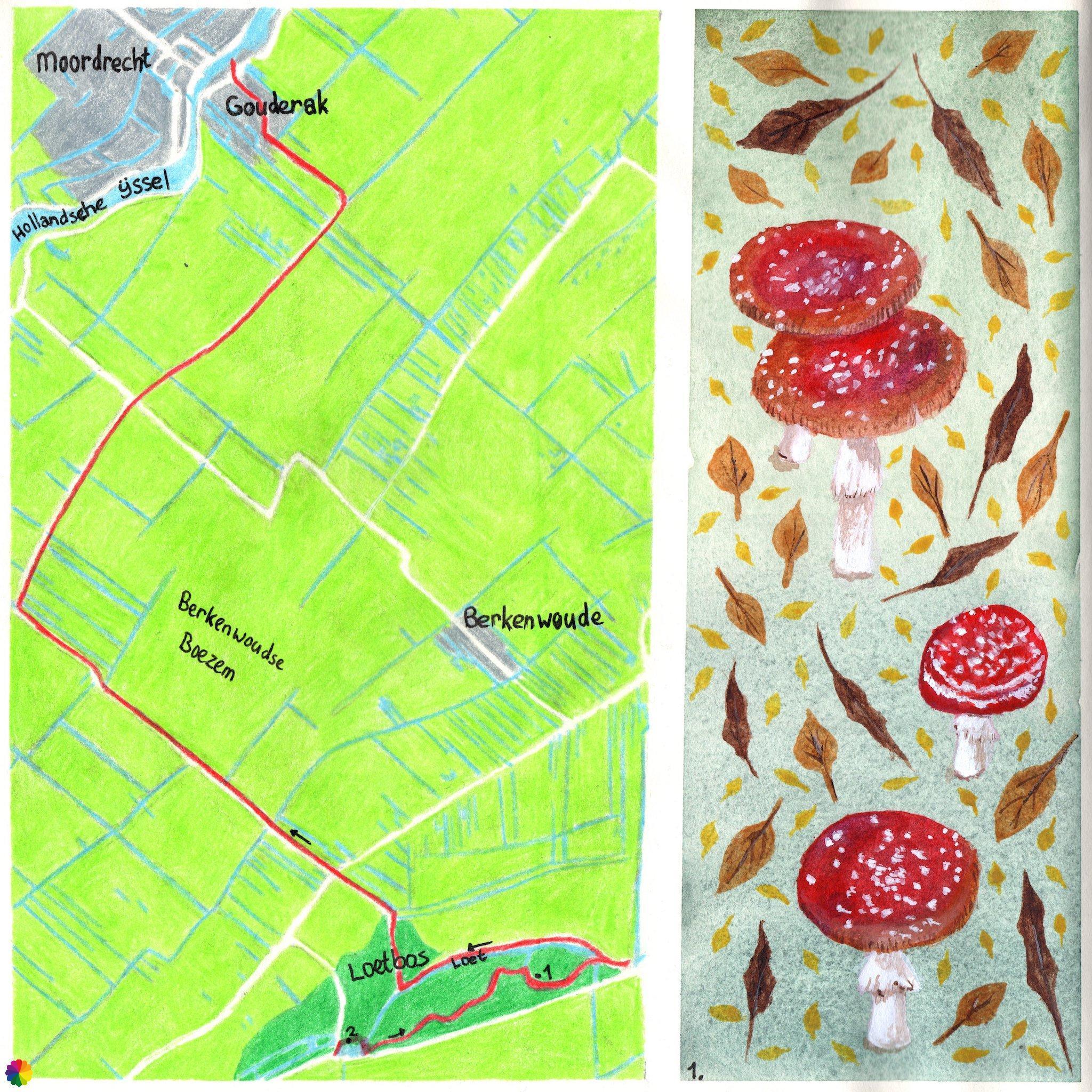 Wandelkaartje Grote rivierenpad Loetbos - Gouderak