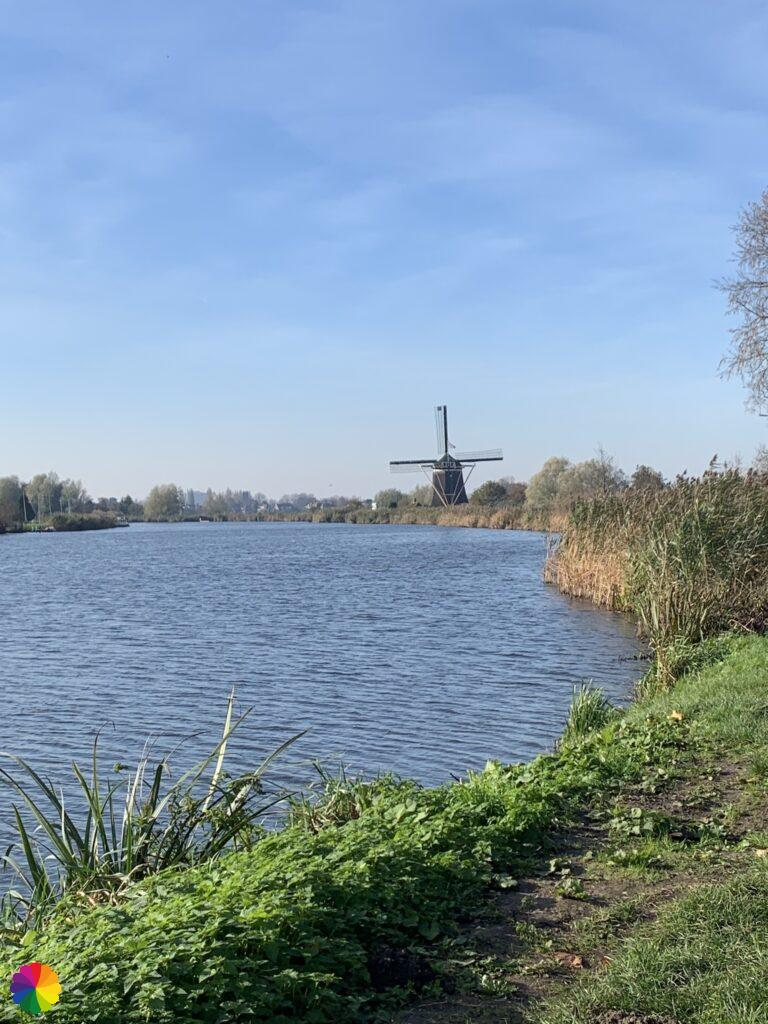 The Rotte river and the Prinsen windmill