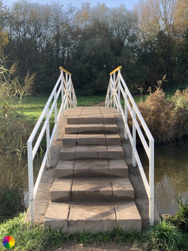 Small bridge in Hoge Bergse woods