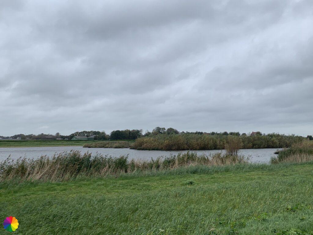 Swampy path at the Eendragtspolder
