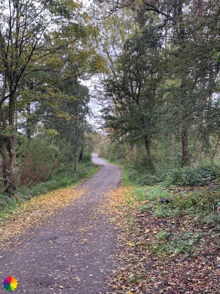 Path to Nieuwerkerk aan den IJssel