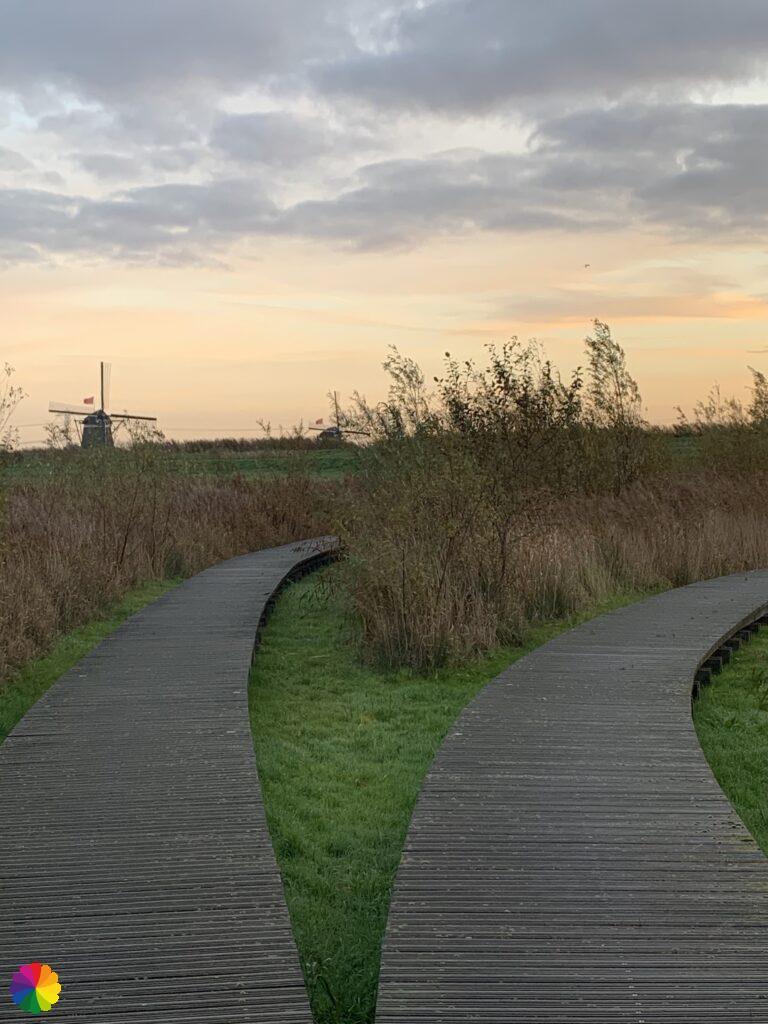 Boardwalk path at Bleiswijkse Fles