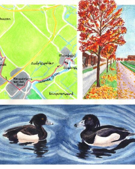 Wandelkaartje Grote rivierenpad Gouderak - Zevenhuizen