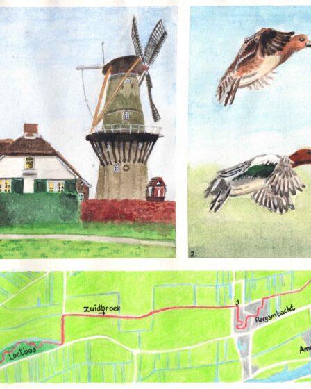 Wandelkaartje Loetbos - Bergambacht - Ammerstol
