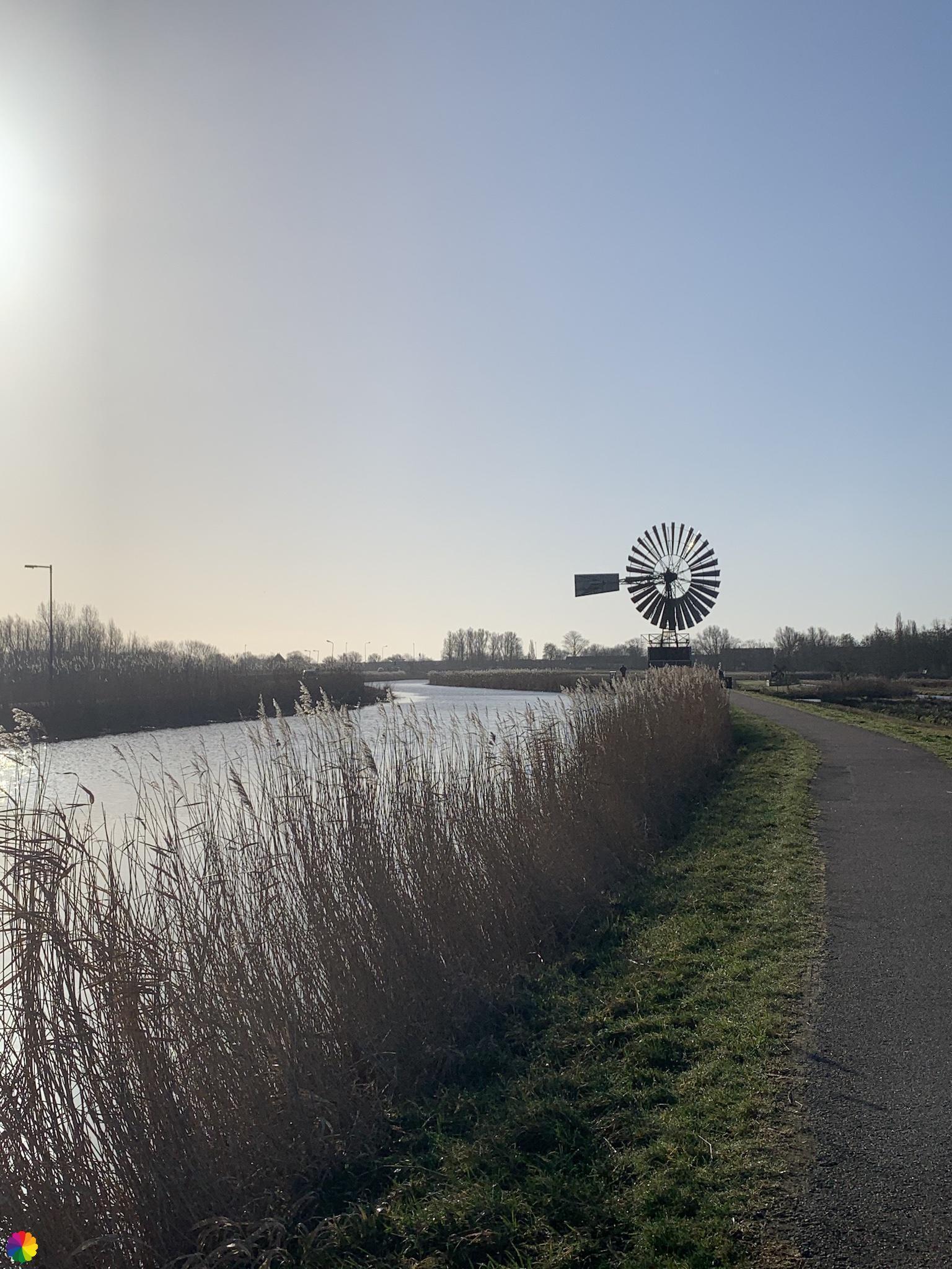 Amerikaanse windmolen langs de Ringdijk