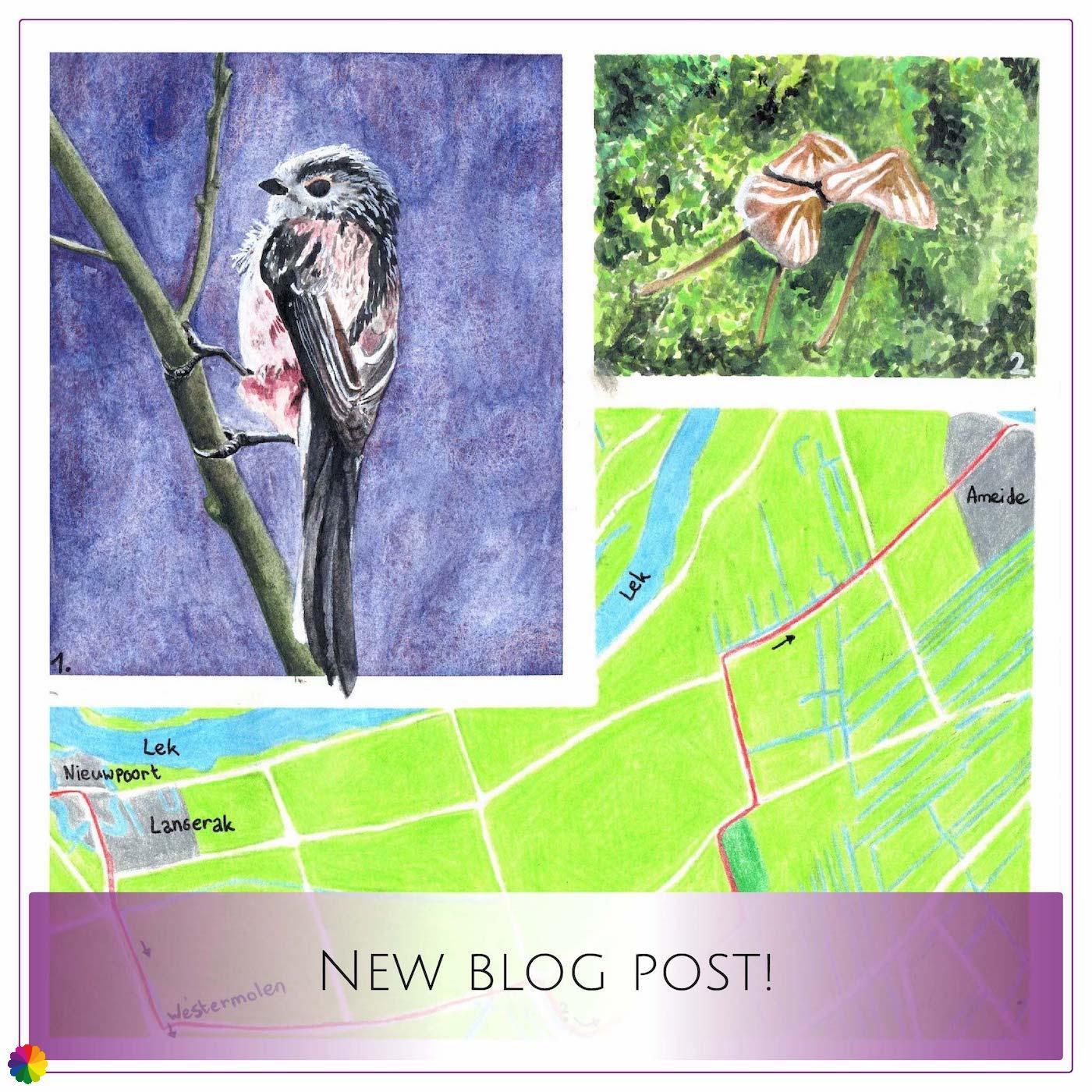 Blog-update Grote rivierenpad Nieuwpoort - Ameide