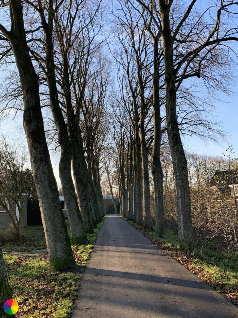 Spoorsingel at Schoonhoven