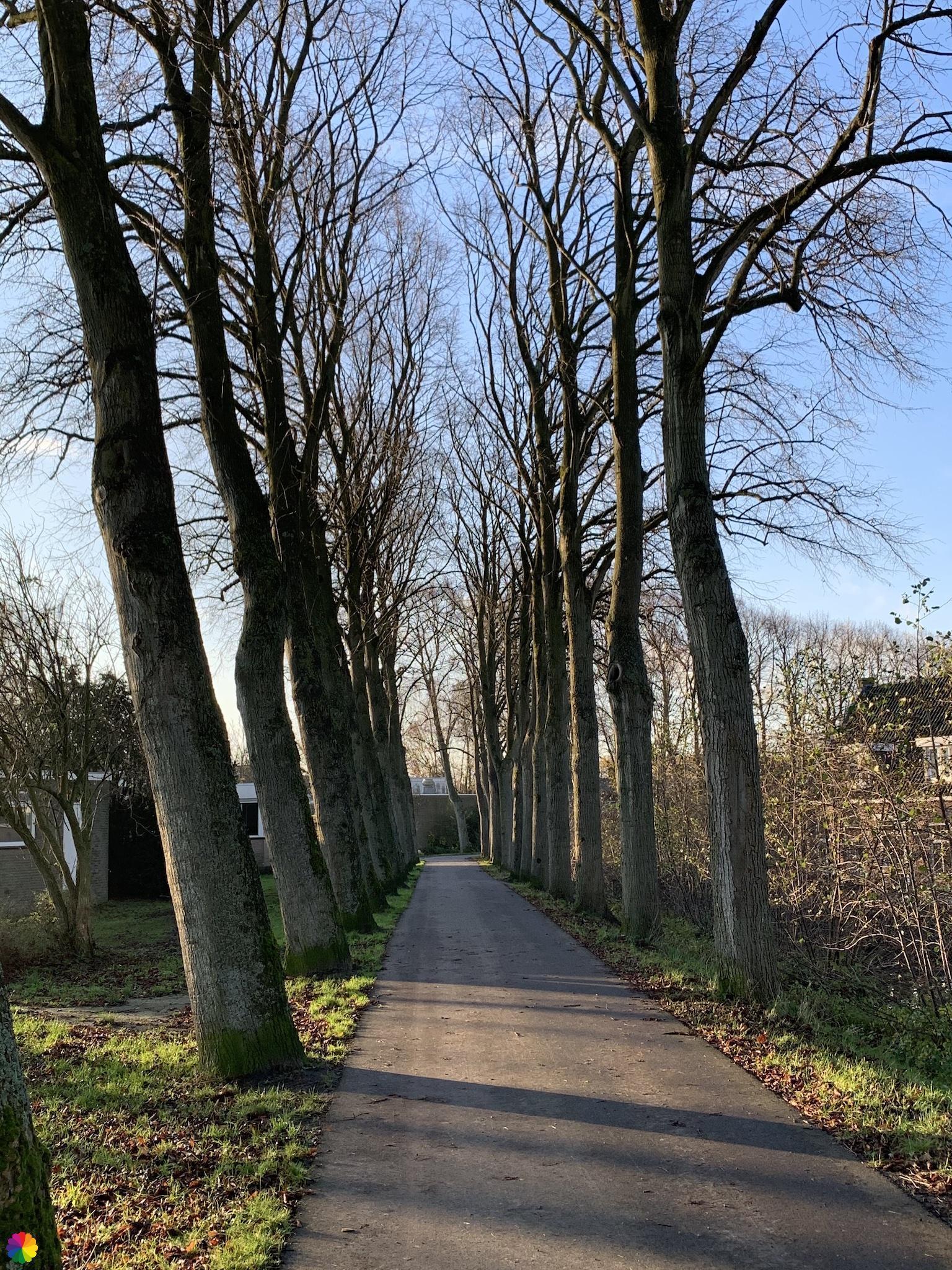 Spoorsingel in Schoonhoven