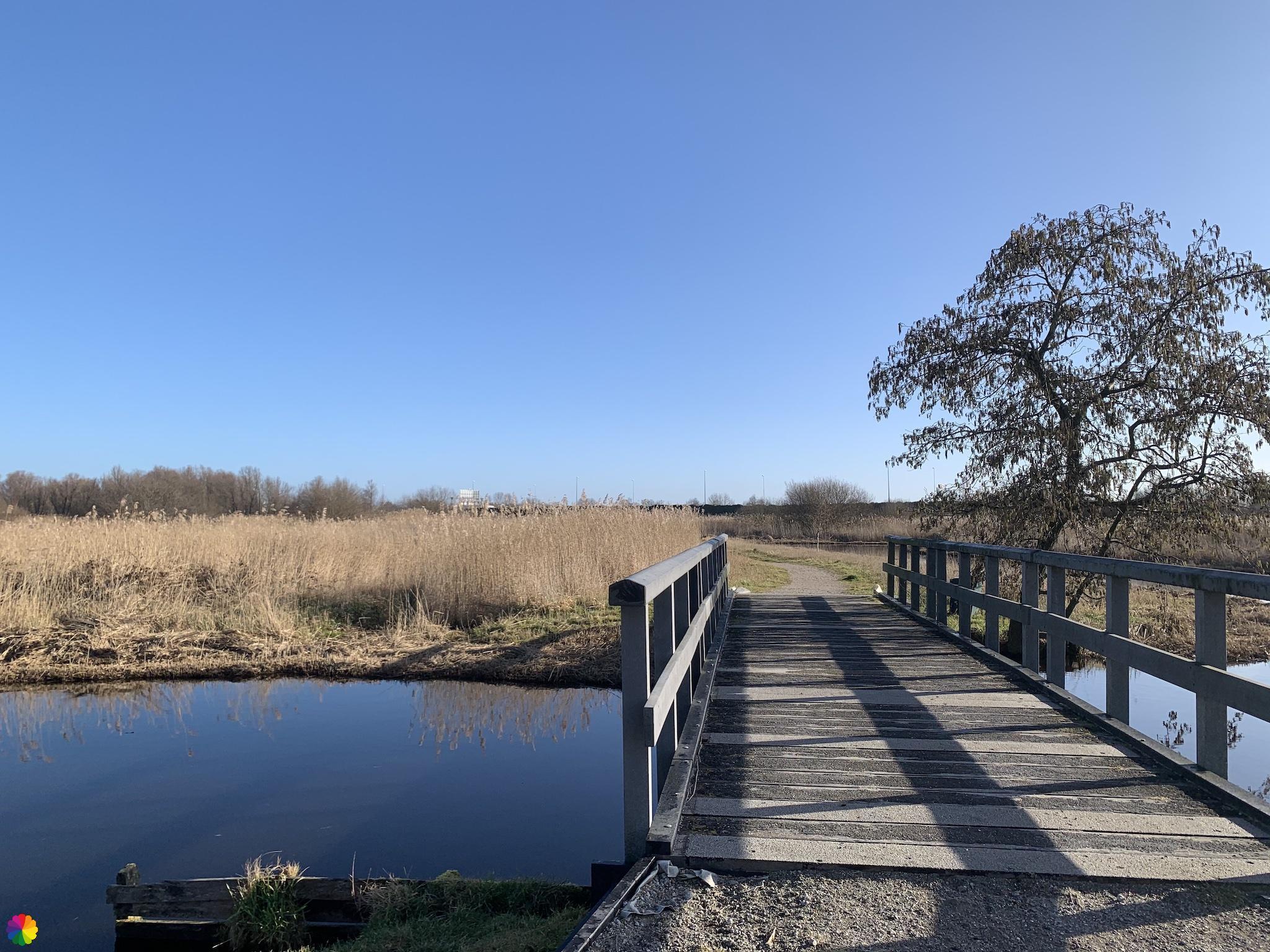 Bruggetje in Jagersveld